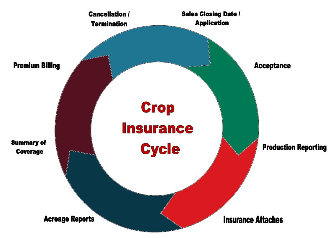 Crop Insurance Cycle Ag360 Insurance